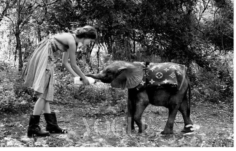 "ALL CREATURES GREAT AND SMALL 나이틀리가 어미를 잃은 새끼 코끼리에게 우유를 먹이고 있다. ""3마리나 있었죠. 코끼리들은 우리를 넘어뜨리려고 했고 먼지 속에서 뒹굴었어요."" 섬세하게 주름 진 드레스는 보테가 베네타(Bottega Veneta), 부츠는 프리에(Frye)."