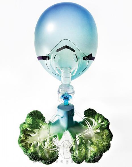 호흡기를 거꾸로 세워둔 브로콜리라고 상상해보자.입과 코로 들어간 공기는 기관지를 따라 내려가양쪽 폐로 접어든다. 그리고 이는 수천 개의 작은기도로 나뉜다. 이 기도들을 기관지라고 한다.브로콜리의 동글동글한 잎처럼 기도 끝에는 '폐포'라는작은 공기 주머니가 있다. 건강한 폐는 수억 개의폐포로 이뤄져 있다. 이 안에서는 산소를 흡수하고이산화탄소를 배출하며, 점액질이 먼지와균을 걸러내고 수백만 개의 섬모가 빗자루처럼이들을 청소한다. 담배가 폐에 직격탄인 이유는바로 이 섬모를 파괴하기 때문이다.