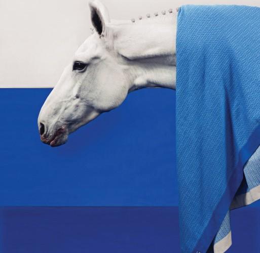 블루 컬러의 울 소재 담요는 에르메스(Hermès).