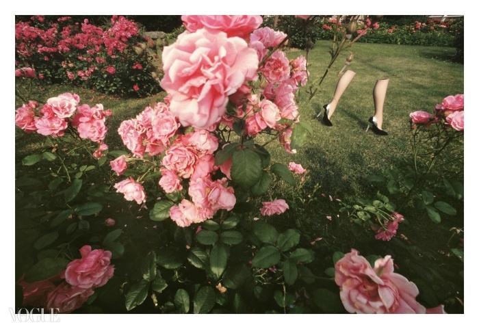 찰스 쥬르당을 위한 기 부르댕, 1979 ⓒ Guy Bourdin Estate/Michael Hoppen Gallery