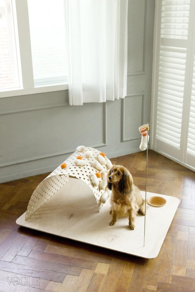 창간 19주년 기념, Vogue Dog & Cat  보그 코리아