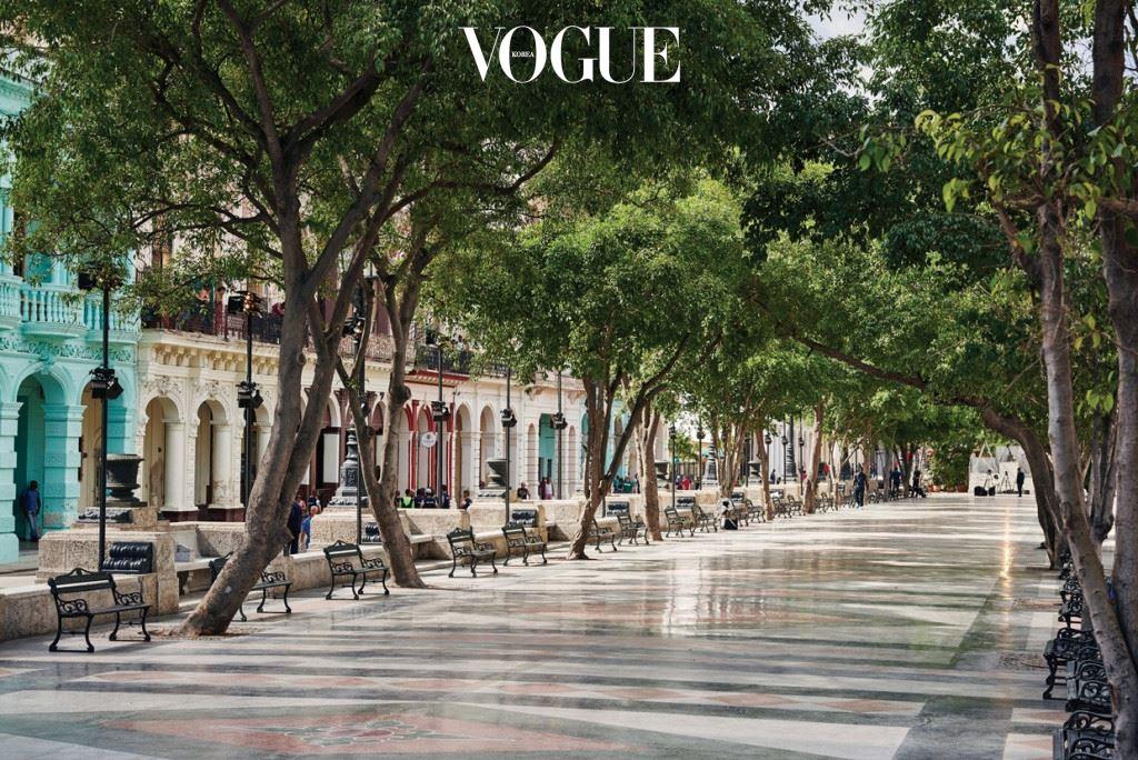 아바나 비에하에서 아바나 센트로까지 길게 뻗은 파세오 델 프라도는 혁명기념탑이 우뚝 솟은 혁명광장만큼이나 쿠바인들에게 사랑받는 거리로, 나무가 늘어선 모습이 '작은 가로수길' 같다. 1928년 당시 쿠바 대통령이었던 헤라르도 마차도의 요청으로 프랑스 건축 조경사 장 클로드 니콜라 포레스티에가 이곳을 새로 설계했다. 길을 내려다보고 있는 황동사자상이 눈에 띄는데, 이 또한 프랑스 금속공예가 장 퓌포르카와 쿠바의 장인인 후안 코마스의 합작품. 알다시피 사자는 마드모아젤 샤넬이 가장 사랑한 동물이기도 하다. 우연의 일치인가?