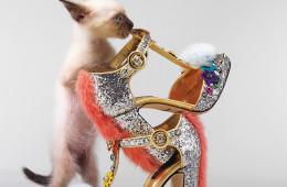 화려한 장식을 더한 컬러풀한 모피 슈즈는 파티용으로 손색없다. 여우털 장식이 되어 있는 시퀸 힐은 돌체앤가바나(Dolce&Gabbana), 스트랩을 잡고 서 있는 고양이는 샴고양이.
