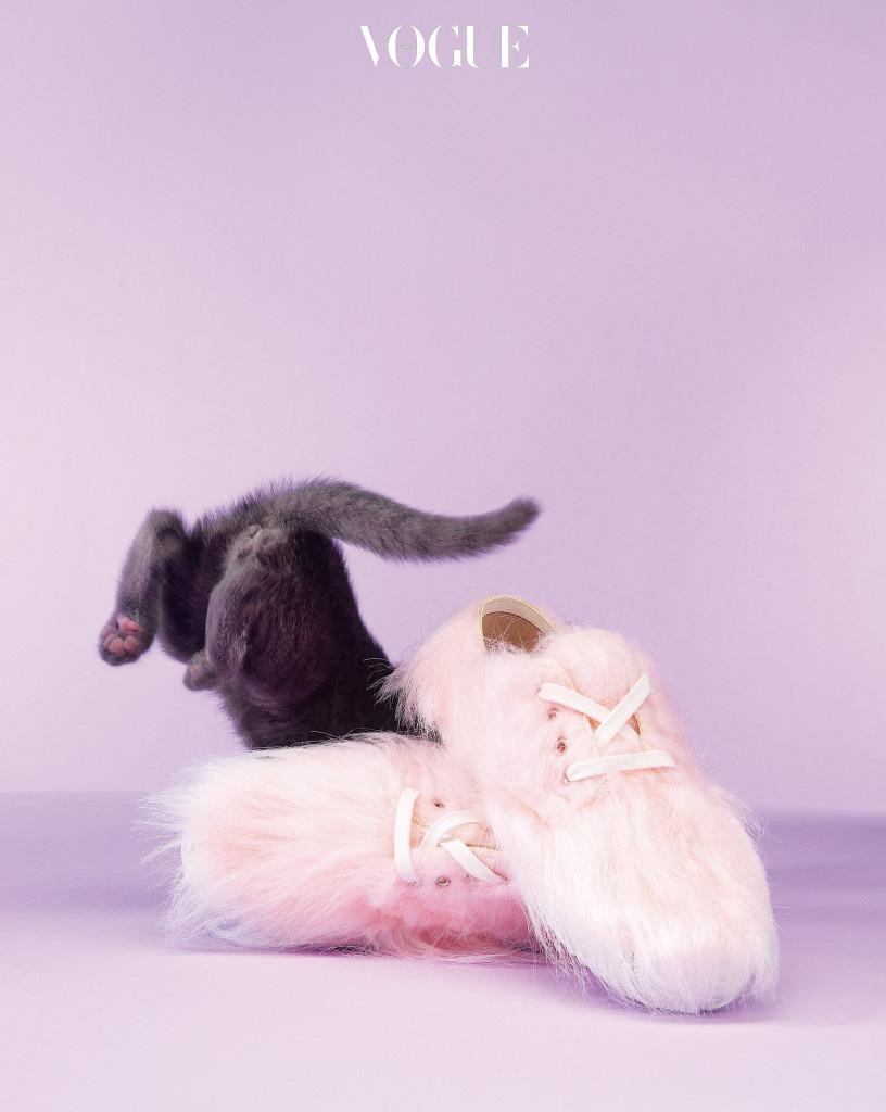 스니커즈야말로 캐주얼하게 모피를 즐길 수 있는 아이템. 솜사탕을 연상케 하는 연분홍 스니커즈는 꼼데가르쏭(Comme des Garçons), 앙증맞은 뒷모습의 고양이는 러시안 블루.