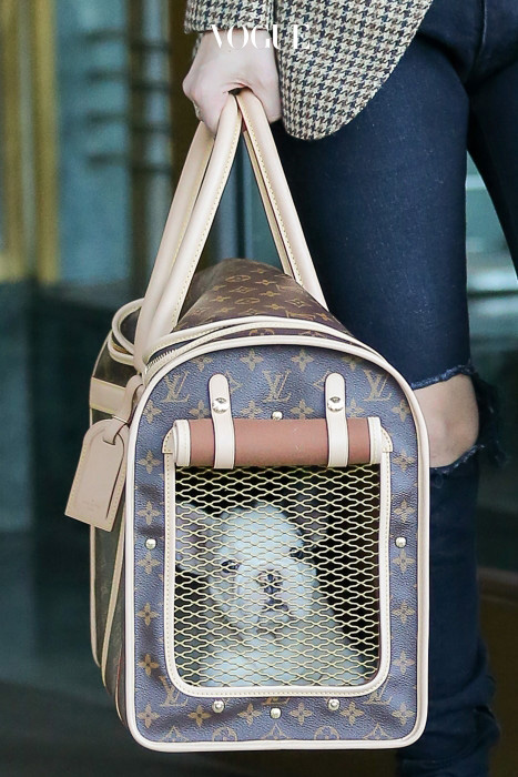 Lady Gaga steps out carrying her new puppy in Louis Vuitton a Dog Carrier  in New York City, she was leaving her apartment building Pictured: Lady Gaga Ref: SPL1398604  231116   Picture by: Felipe Ramales / Splash News Splash News and Pictures Los Angeles:310-821-2666 New York:212-619-2666 London:870-934-2666 photodesk@splashnews.com