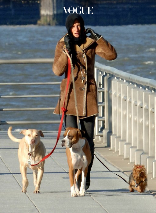 Gisele Bundchen walking her dogs on a very cold winter day in New York City.      Picture by: Jason Winslow  Ref: WJNY JRANY LBNY 260107 A  Splash News and Pictures Los Angeles:310-821-2666 New York:212-619-2666 London:207-107-2666 photodesk@splashnews.com www.splashnews.com
