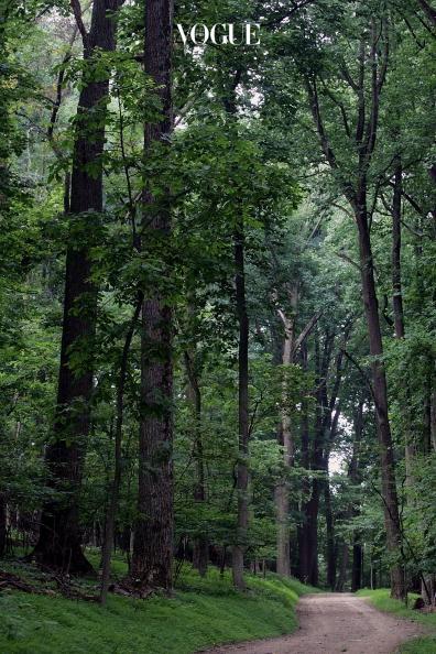"""""""도시에서 태어나고 자라 평소에 자연을 접할 기회가 많지 않았어요. 미국 버지니아 숲에서 느낀 감동은 그래서 더 남달랐죠. 코끝을 스치는 삼나무 향에 매료돼 이듬해 만든 향수가 '슈퍼 시더'랍니다."""""""