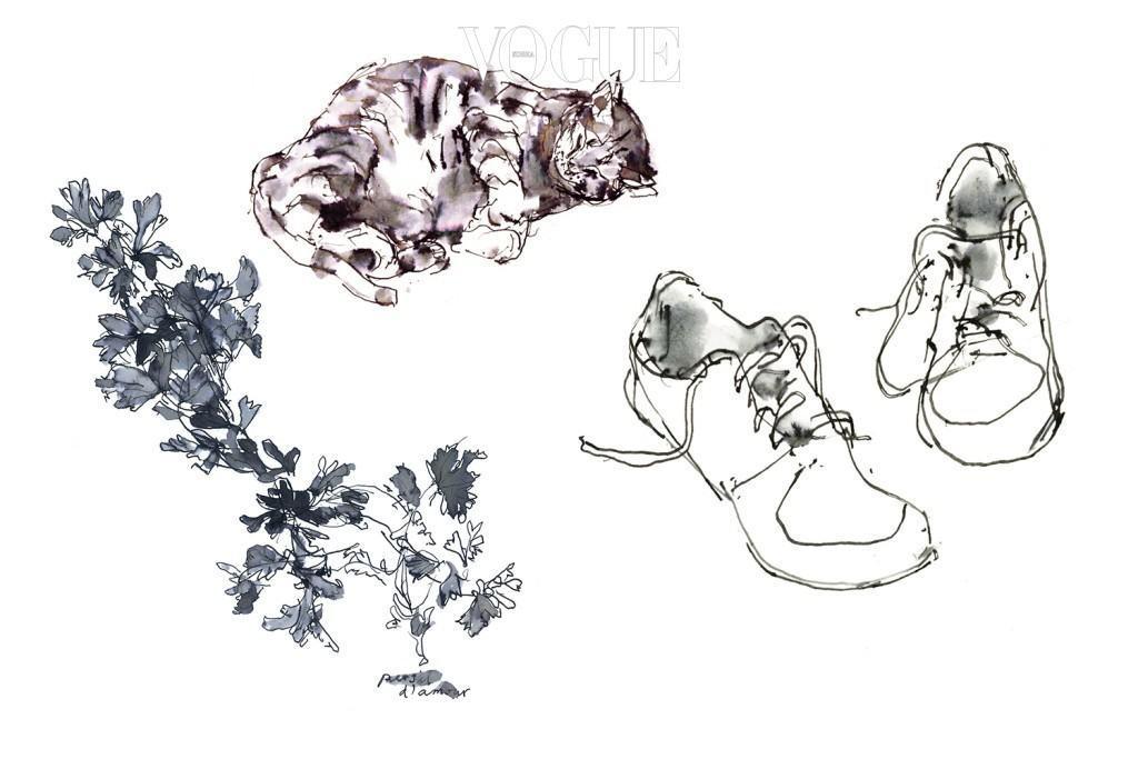 의 한국어판 서문을 대신하여 존 버거가 보낸 파슬리 드로잉, 고양이. 목련, 에 실린 슈즈 드로잉.