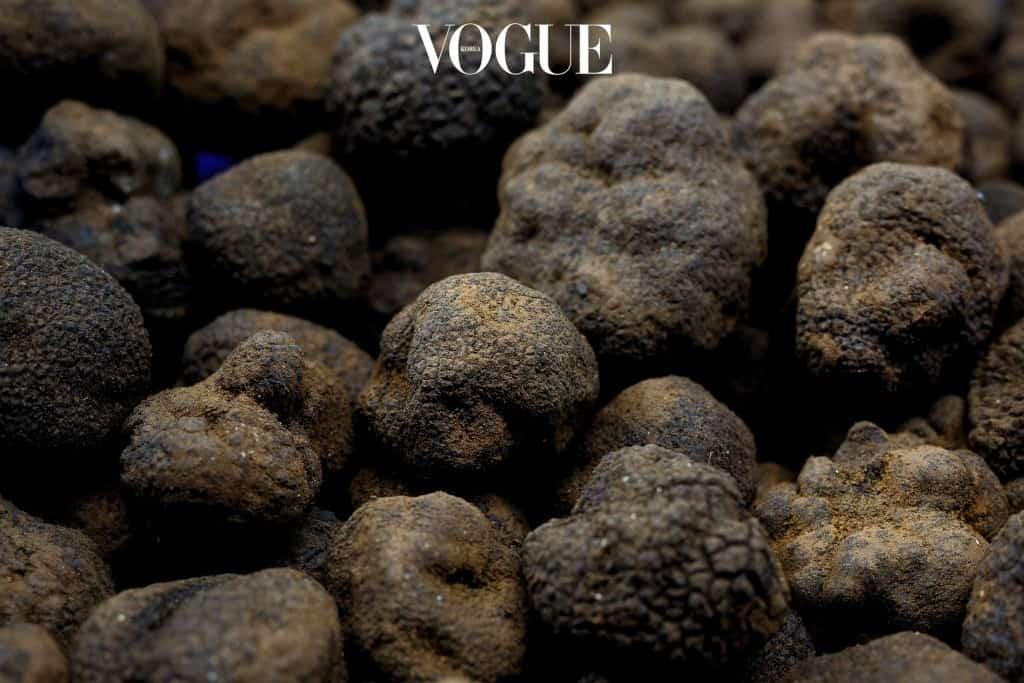 송로버섯은 땅속의 다이아몬드라 불릴 정도로 귀한 재료로 알려져 있습니다. 미식가들의 까다로운 입맛을 만족시켜주던 트러플이 최근 화장품 성분으로 각광받기 시작했습니다. 트러플 속에 들어 있는 비타민 B와 아미노산, 미네랄, 레티놀 등이 피부에도 효과적으로 작용한다는 연구 결과 덕분이죠.