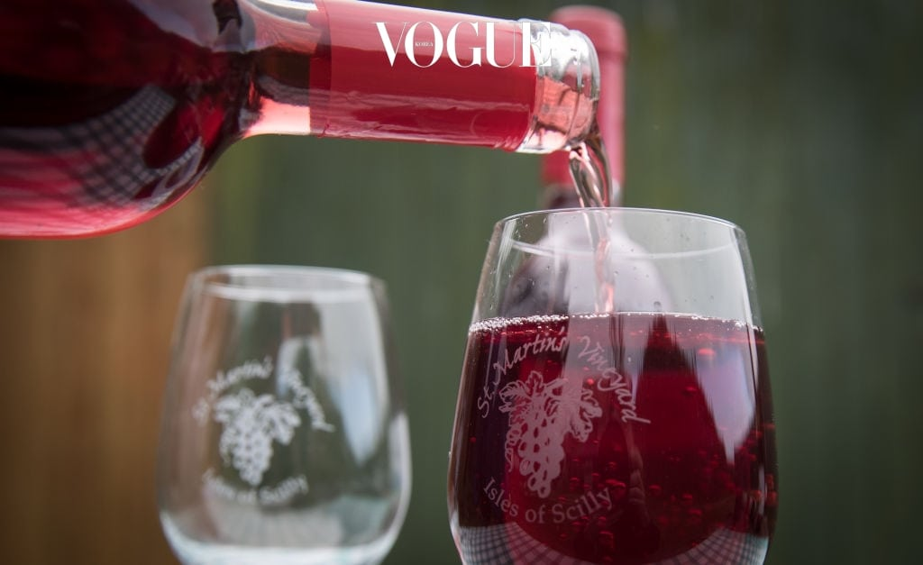 7 레드 와인 와인 한 잔을 마시는 것이 수학 방정식을 푸는 것보다 뇌를 훨씬 더 많이 자극한다는 말도 있죠? 특히 레드 와인을 마시는 것은 뇌를 위한 가장 이상적인 '운동'이라고 합니다. 와인의 향을 음미하는 과정에서 뇌 세포는 그야말로 '풀가동'되며, 와인을 입에 머금는 순간 혀의 근육과 수천 개의 신경 세포가 운동을 시작한다는 사실!