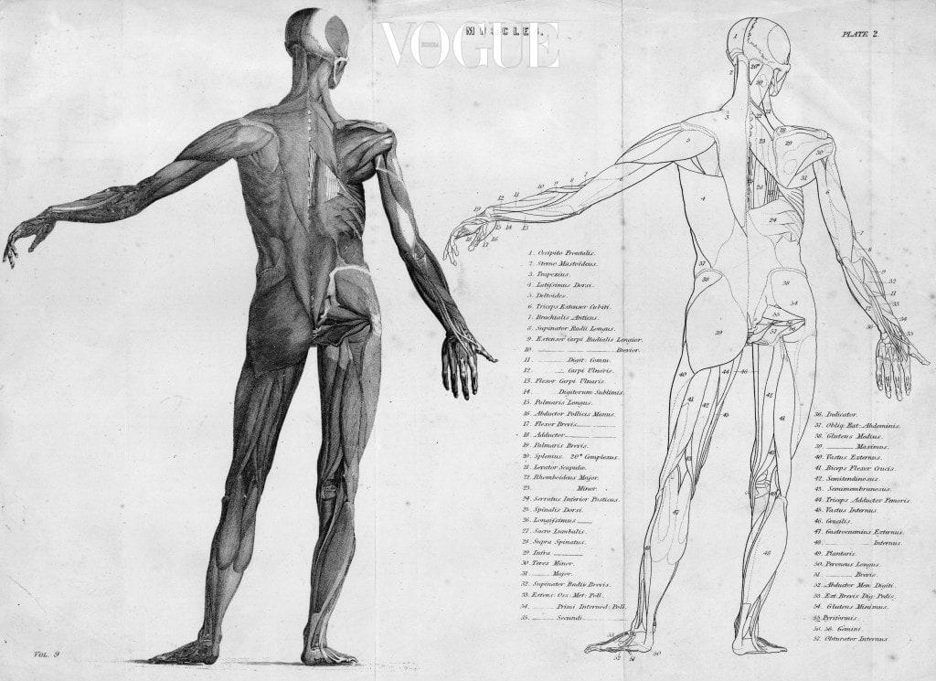 특히 장시간 같은 자세를 취하거나 신체의 한 부분만 사용하면 근막이 복원성을 잃어 변형이나 당김이 발생하게 되죠. 근막이 유착되면 근막 간에 마찰이 생기면서 각 조직의 움직임이 원활하지 않게 되고 혈관이 근막을 조이면서 혈액순환이 나빠져 통증을 일으키게 되는 것이랍니다.