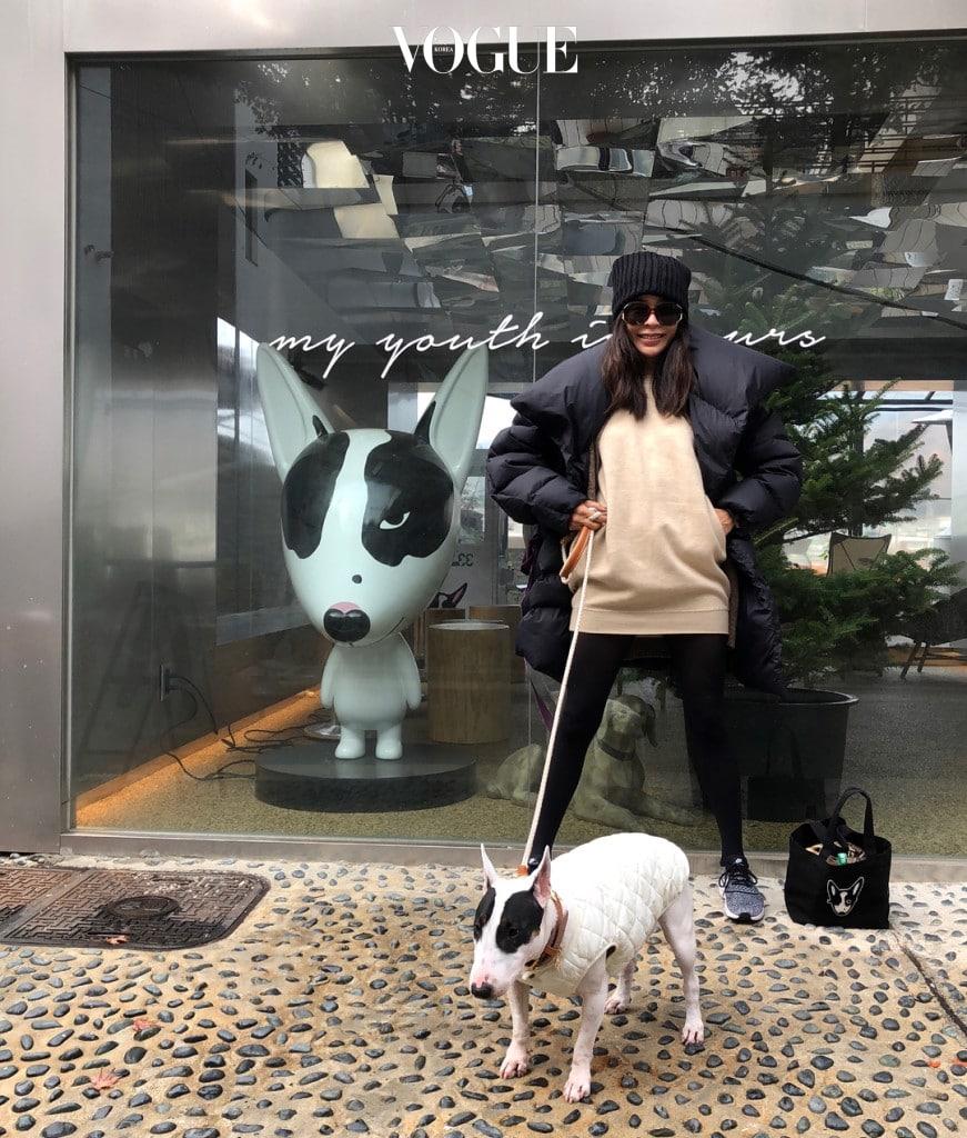 #강아지를 뮤즈로 한 브랜드 런칭 이혜영 @leehaeyoung1730