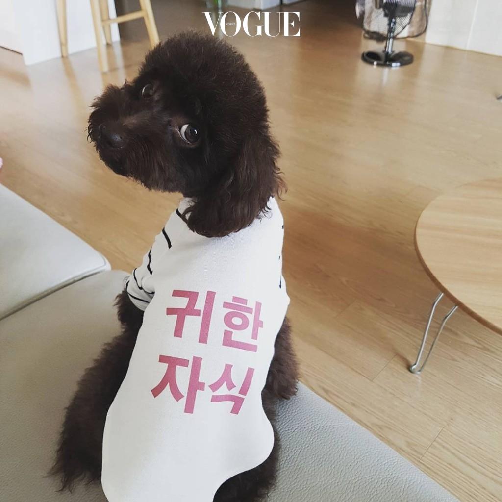 윤현민 @yoonhyunmin