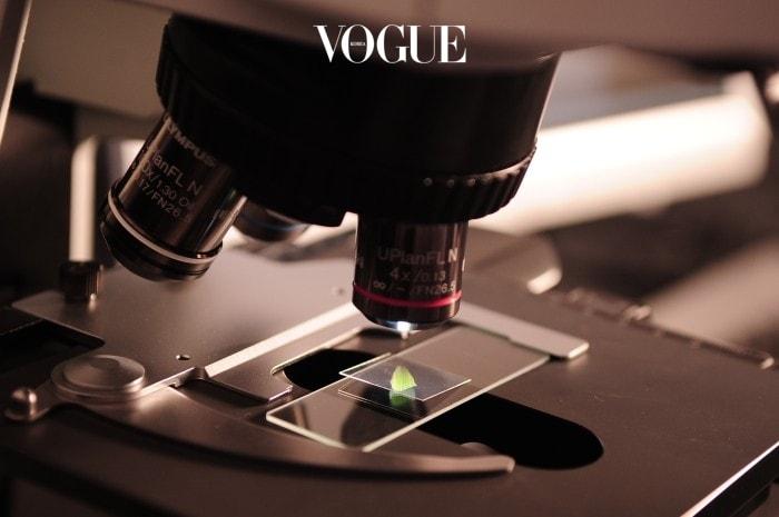 모낭을 일일이 채취해 이식하는 기존의 방식을 생각하면 엄청난 발견입니다. 모낭을 인공적으로 만들 수 있게 된다면 모낭 자체가 부족한 사람들도 충분히 이식에 성공할 수 있기 때문이죠.