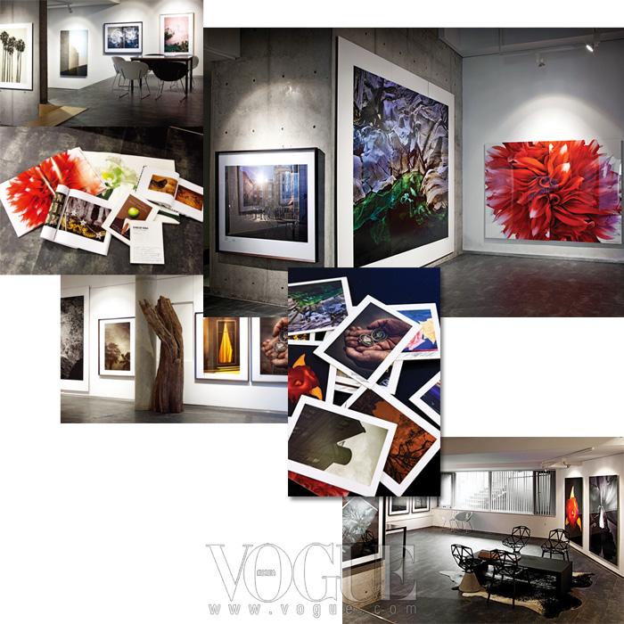 김중만의 인상적인작품들로 전시된 지하갤러리의 풍경. 이곳에서는그의 사진집은 물론,사진들의 구매도 이뤄진다.