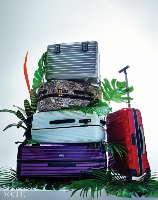 맨 위 알루미늄 소재 트렁크(21인치, 4.7kg)와 맨 아래 보라색 폴리카보네이트 트렁크(30인치, 3.4kg)는 리모와(Rimowa), 뱀피 프린트의 폴리카보네이트 트렁크(25인치, 3.4kg)와 빨간색 커브 소재 트렁크(20인치, 1.9kg)는 쌤소나이트(Samsonite), 흰색 폴리카보네이트 트렁크(가로 47.5cm, 세로 70cm, 3.6kg)는 롱샴(Longchamp).