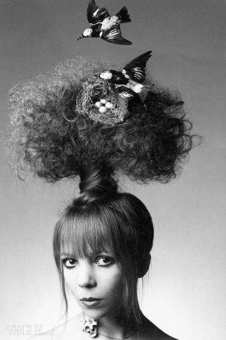 '트리 위에 둥지를 튼 새'! 사진작가 클라이브 애로우스미스가 찍은 페넬로페 트리.  1970년 6월호. ⓒ Clive Arrowsmith