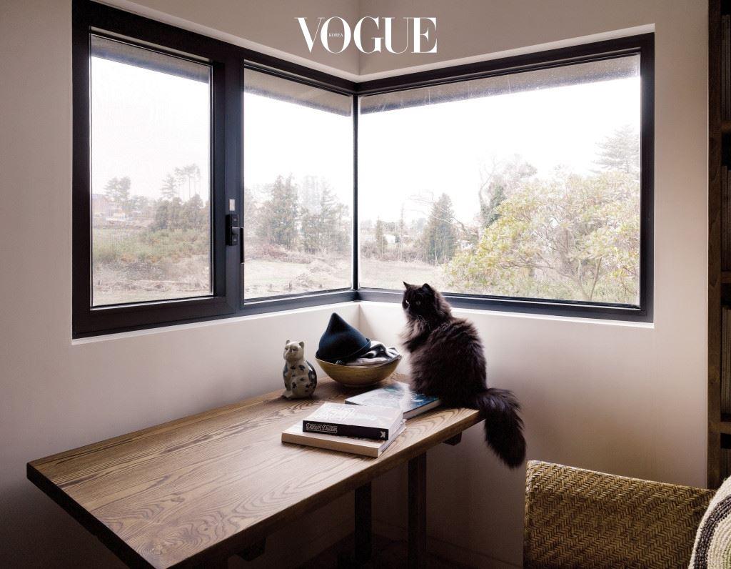 한지를 바른 듯 새하얀 공간에 한옥처럼 작은 창을 낸 김정한의 집은 동양적인 정서로 가득하다. 창에 걸린 한 폭의 그림 같은 제주도의 풍경을 즐기는 고양이는 로니.