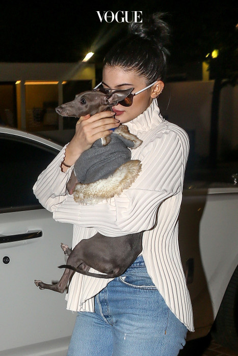 UK CLIENTS MUST CREDIT: AKM-GSI ONLY West Hollywood, CA - Kylie Jenner holds on tight to her beloved dog as she stops by Fred Segal to shop.  Kylie appeared to be a very protective dog owner, carrying her dog like a infant child. Pictured: Kylie Jenner Ref: SPL1194888  111215   Picture by: AKM-GSI / Splash News