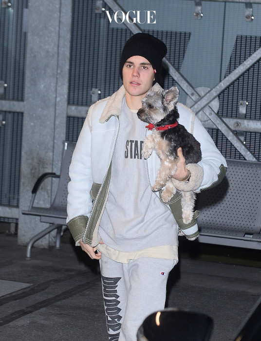 Justin Bieber carries a puppy while at the airport after a gig in Krakow, Poland. Pictured: Justin Bieber Ref: SPL1391476  111116   Picture by: Splash News Splash News and Pictures Los Angeles:310-821-2666 New York:212-619-2666 London:870-934-2666 photodesk@splashnews.com