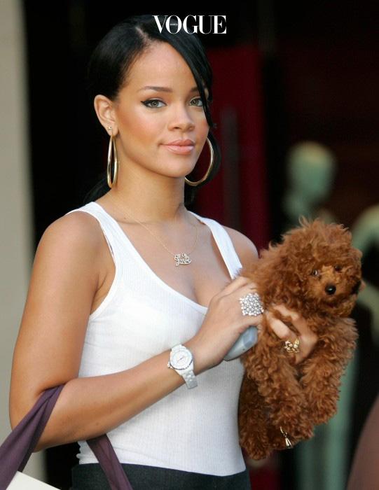 Rihanna and her puppy out and about shopping at Stella McCartney in NYC  Ref: SPL4588 031007  Picture by: J.Lee/A.Elatab / Splash News Splash News and Pictures Los Angeles: 310-821-2666 New York: 212-619-2666 London: 870-934-2666 photodesk@splashnews.com