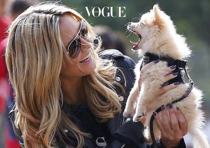 Heidi Klum having fun with her new puppy at a soccer field with her kids and the whole family in Los Angeles. Pictured: Heidi Klum Ref: SPL630383  131013   Picture by: JD / Reefshots / Splash News Splash News and Pictures Los Angeles:310-821-2666 New York:212-619-2666 London:870-934-2666 photodesk@splashnews.com