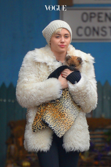 EXCLUSIVE: **NO WEB UNTIL 8AM GMT APRIL 6TH 2014** Miley Cyrus seen out for the first time with new dog Moonie. Miley Cyrus and mother Tish Cyrus visit 4 different pet stores (Canine syles, DoggyStyle, Petco and PetSmart). Pictured: Miley Cyrus  Ref: SPL730273  040414  EXCLUSIVE: Picture by: JosiahW / Splash News Splash News and Pictures Los Angeles:310-821-2666 New York:212-619-2666 London:870-934-2666 photodesk@splashnews.com