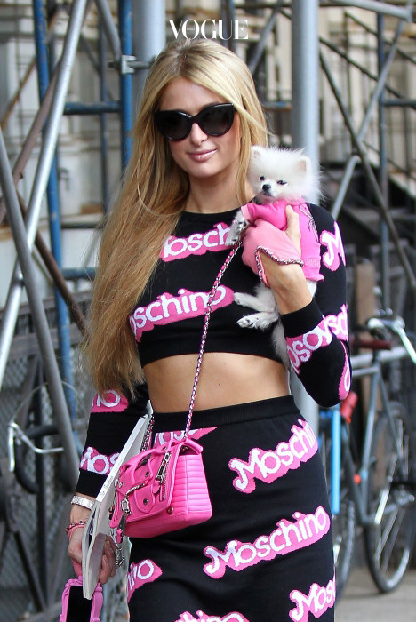 Paris Hilton carries her $13,000 Pomeranian tiny puppy that she bought recently on the streets of NoHo, New York City. Pictured: Paris Hilton Ref: SPL867775  171014   Picture by: Splash News Splash News and Pictures Los Angeles:310-821-2666 New York:212-619-2666 London:870-934-2666 photodesk@splashnews.com