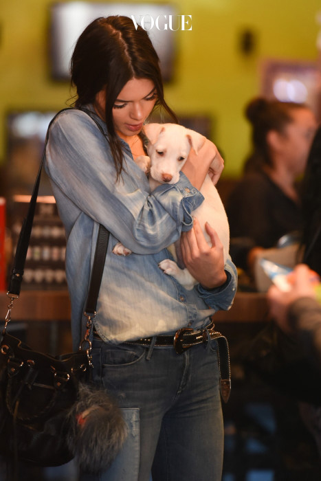 Kendall Jenner and Khloe Kardashian take home a new puppy from 'Bark n Bitches' pet shop in Los Angeles Pictured: Kendall Jenner, Khloe Kardashian Ref: SPL1054292  140615   Picture by: GONZALO/Bauergriffin.com