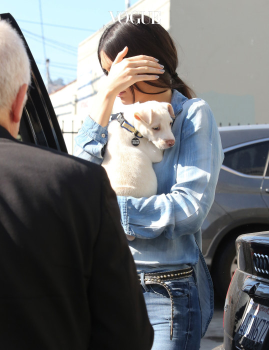 Kendall Jenner and Khloe Kardashian take home a new puppy from 'Bark N Bitches'  pet store in Los Angeles Pictured: Kendall Jenner Ref: SPL1054315  140615   Picture by: Bauer-Griffin/Bauergriffin.com