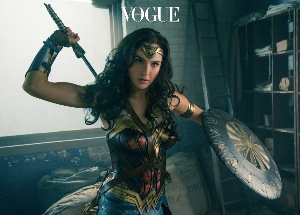 그리스 신화에 나오는 여성 부족인 아마존 출신의 전사. 신의 가호를 받고 태어난 아마존의 여자들은 거의 신급의 존재로 슈퍼맨이 부럽지 않은 능력을 가지고 있다. 그 중 아마존 여왕의 딸이자 최고의 전사인 다이애나는 전쟁에서 인류를 구하기 위해 인간세상으로 나가 '원더우먼'이 된다. 무엇이든 방어하는 팔찌, 무엇이든 베어 버리는 티아라, 진실의 올가미 등 무적의 무기들을 지니고 있어 더더욱 약점을 찾아보기 힘든 수퍼 히어로. 작년 에서 등장한 새로운 원더우먼은 올해 단독 영화인 으로 찾아온다.