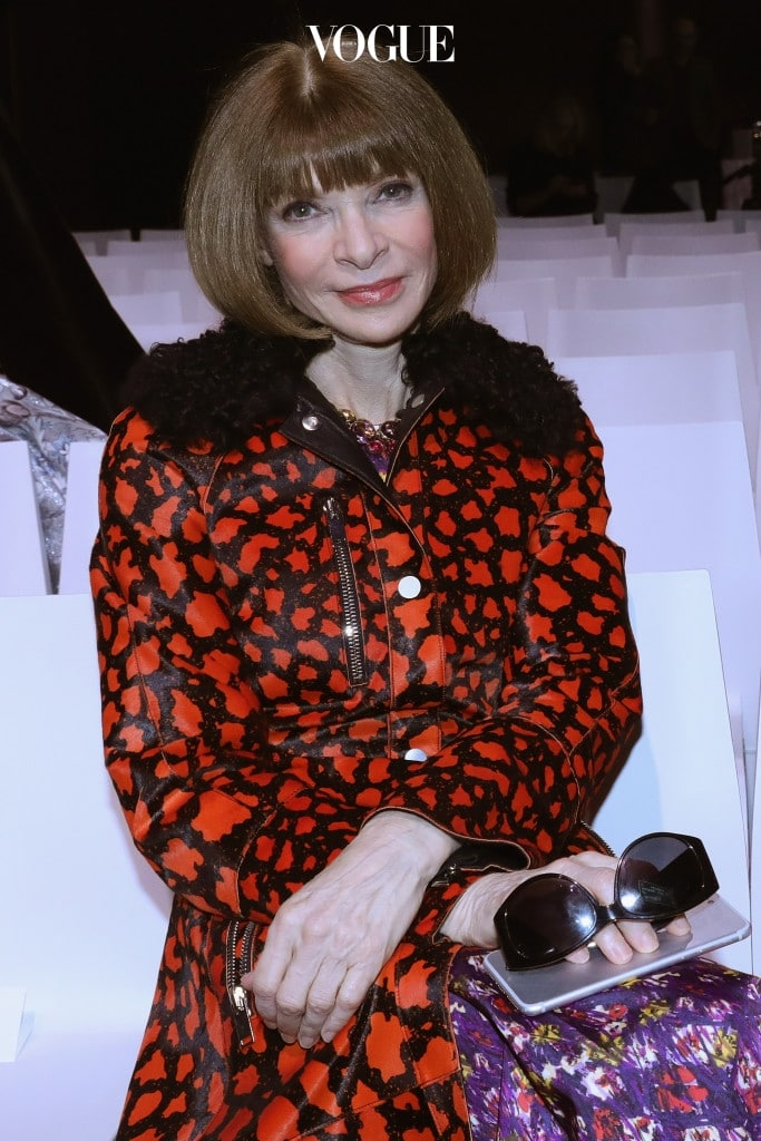 """PARIS, FRANCE - MARCH 06:  Anna Wintour attends the """"Rei Kawakubo Comme Des Garcons Art Of The In-Between"""" Presentation as part of the Paris Fashion Week Womenswear Fall/Winter 2017/2018 on March 6, 2017 in Paris, France.  (Photo by Vittorio Zunino Celotto/Getty Images)"""