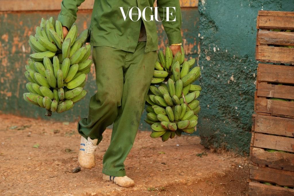 바나나  바나나가 다이어트 식품으로 각광받는 이유는 포만감을 주고 변비를 예방해주기 때문이지, 결코 열량이 낮아서가 아닙니다. 슬라이스한 한 컵의 바나나는 134칼로리로 결코 만만치 않은 열량을 갖고 있답니다. 말린 바나나의 경우, 100g당 무려 500kcal를 자랑하죠. 열대 과일에는 천연 과당이 다량 함유되어 있어 많이 섭취할 경우 쉽게 살이 찌는 체질로 바뀔 수 있어요.