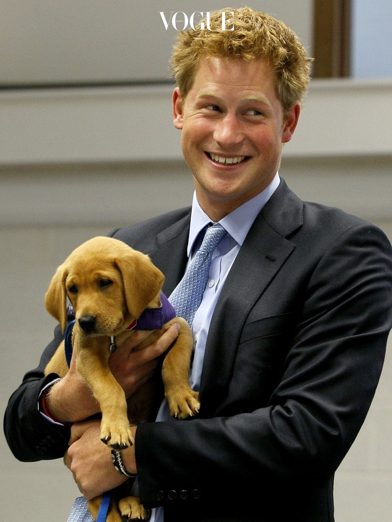 영국 엘리자베스 2세 여왕의 손자이자 윌리엄 왕세손의 동생인 '해리 윈저 왕자' 2017년 현재, 왕위 계승 서열 5위인 그는 어렸을 적부터 '왕손'답지 않은 모습으로 저명합니다.