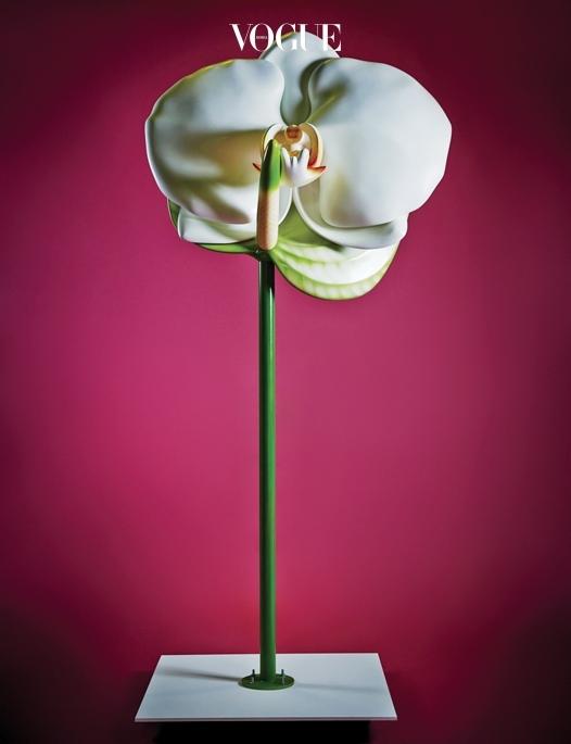 앤슈리엄 줄기와 팔레놉시스 꽃을 결합한 작품 'Volume 2'.