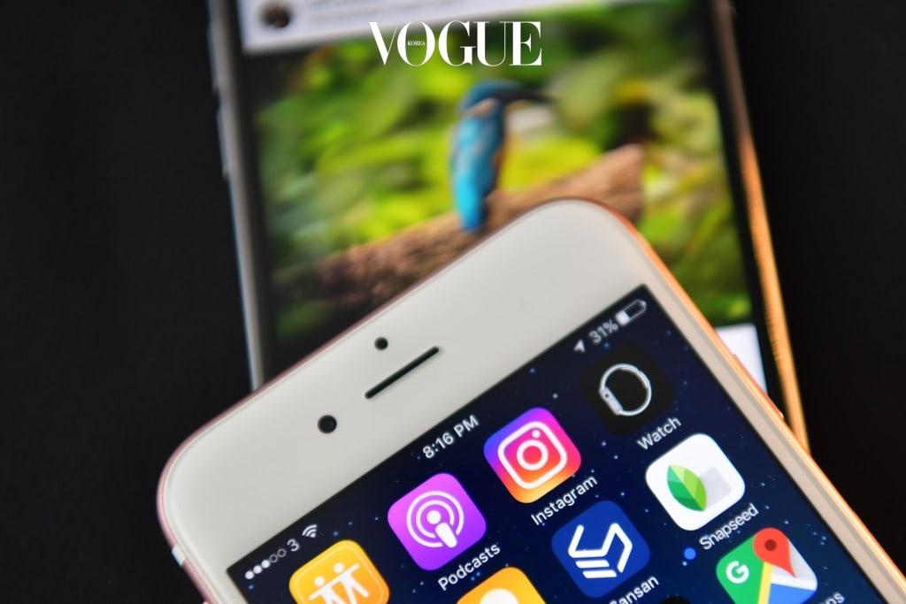 온라인의 발달과 모바일 컨텐츠의 발전으로 하루가 멀다하고 신선한 즐길 거리가 쏟아져 나오는 SNS 세계.